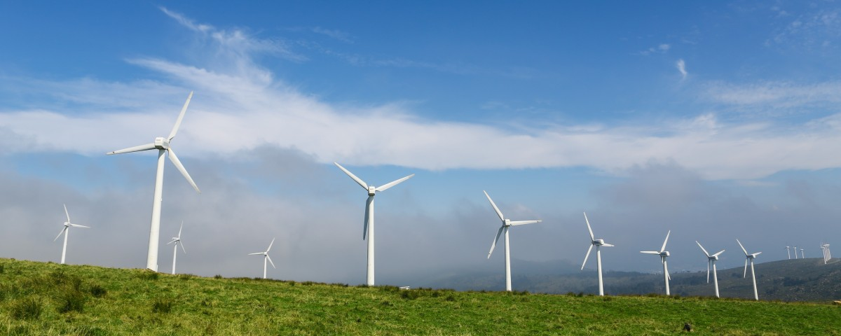 Wind farm in a green field - renewable energy